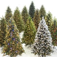 Decorate Multiple Christmas Trees