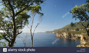 100 Waterfall Bay Near Eaglehawk Neck Stock Photos Near