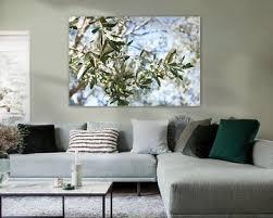 olivenbaum bilder auf leinwand poster bestellen ohmyprints