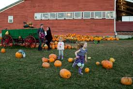Seattle Pumpkin Patch by In Snohomish Young Pumpkin Lovers Get Into The Halloween Spirit