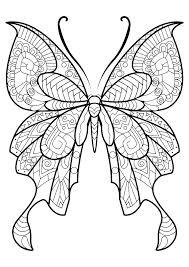 Monarch Coloring Page Life Caterpillar