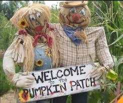 Live Oak Canyon Pumpkin Patch 2015 by Pumpkin Patch In Redlands Yucaipa Ca 2013