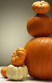 White Pumpkin Seeds Testosterone by Pumpkin Seeds Are Good For You 11 Nutritional Health Benefits