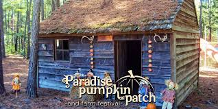 Pumpkin Patches Near Bakersfield Ca by Paradise Pumpkin Patch Home Paradise Pumpkin Patch