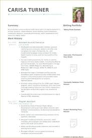 Account Manager Resume Examples Sample In Samples Program Executive