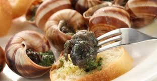 cuisiner les escargots de bourgogne comment cuisiner les escargots fourchette