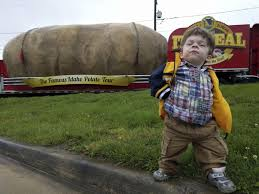 Tiny Chesterfield Boy Develops Special Relationship With Big Potato ...