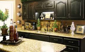 decor kitchen themes pleasant kitchen themes images exotic