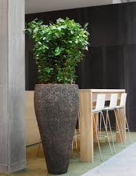 100 Axis Design Group Benholm Natural Planter Tsunami