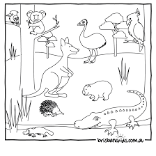 A Group Of Australian Animals Colouring In