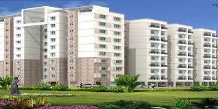 Apartments In Chennai | Flats In Chennai For Sale Bell Flower Apartments Chennai Flats Property Developers Flats In Velachery For Sale Sarvam In Home Design Fniture Decorating Gallery Real Estate Company List Of Top Builders And Luxury Low Budget Apartmentbest Apartments Porur Chennai Nice Home Design Vijayalakshmi Cstruction And Estates House Apartmenflats Find 11221 Prince Village Phase I 1bhk Sale Tondiarpet Penthouses For Anna Nagar 2 3 Cbre