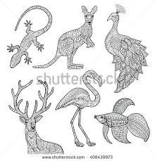 Vector Hand Drawn Illustrations Of Animals Lizard Kangaroo Peacock Deer Flamingo