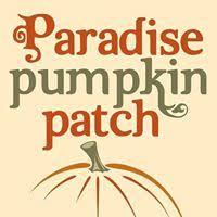 Pumpkin Patch Auburn Al by Fall Farms U2013 Auburn Opelika Parents