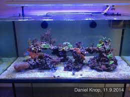 CORAL Video: Preview Daniel Knop's Reef Aquarium Home Design Aquascaping Aquarium Designs Aquascape Simple And Effective Guide On Reef Aquascaping News Reef Builders Pin By Dwells Saltwater Tank Pinterest Aquariums Quick Update New Aquascape Of The 120 Youtube Large Custom Living Coral Nyc Live Rock Set Up Idea Fish For How To A Aquarium New 30g Cube General Discussion Nanoreefcom Rockscape Drill Cement Your Gmacreef Minimalist 2reef Forum
