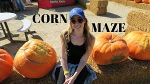 Where Did Pumpkin Patch Originate by Corn Maze And Pumpkin Patch In Los Angeles Youtube