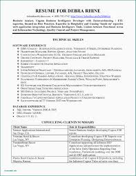46 Functional Resume Sample Information Technology