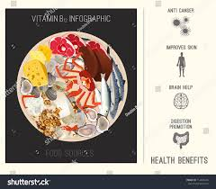 High Vitamin B12 Foods Healthy Seafood Stock Vector