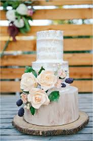 Dress Cake Such A Pretty Naked Rustic Wedding