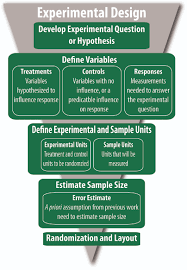 Experimental Design eXtension