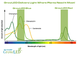 EarthLED GrowLED™ Series LED Grow Lights – EarthLED