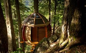 100 Whistler Tree House Free To A Good Home Via Craigslist S HemLoft