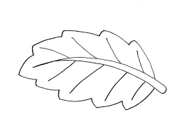 Leaf Coloring Page Pages Leaves Drawing Fall Free Big Printable Medium Size