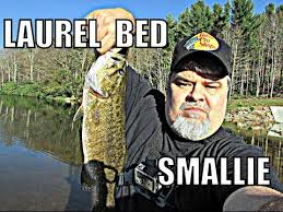 Laurel Bed Lake by Laurel Bed Lake How To Become A Pro Bass Fisherman