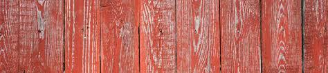 Stoney Ridge Pumpkin Patch Bellingham Wa by Gallery