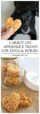 Pumpkin Puree For Dog Constipation by Best 25 Healthy Dog Treats Ideas On Pinterest Diy Dog Treats