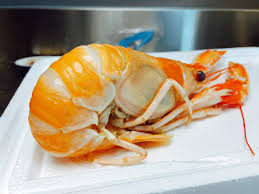 destockage cuisine 駲uip馥 destockage cuisine 駲uip馥 75 images cuisine 駲uip馥 destockage