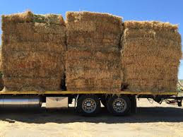 Hay For Sale   FARM DIRECT HAY Hay For Sale In Boon Michigan Boonville Map Outstanding Dreams Alpaca Farm Phil Liske Straw Richs Cnection Peterbilt 379 At Truckin Kids 2013 Youtube Bruckners Bruckner Truck Sales Lorry Stock Photos Images Alamy Mitsubishi Raider Wikipedia For Lubbock Tx Freightliner Western Star Barmedman Motors Cars Sale In Riverina New South Wales On Economy Mfg Dennis Farms Equipment Auction The Wendt Group Inc Land And