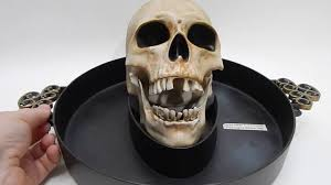 Halloween Candy Dish by Gemmy Animated Candy Dish Bowl Head Skull Motion Activated