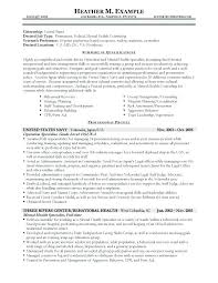 Sample Federal Government Resume Template