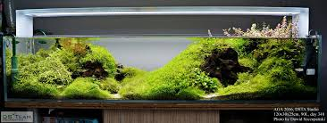 DS Team Aquascaping - Timeline | Aquascape | Pinterest | Timeline ... An Inrmediate Guide To Aquascaping Aquaec Tropical Fish Most Beautiful Aquascapes Undwater Landscapes Youtube 30 Most Amazing Aquascapes And Planted Fish Tank Ever 1 The Beautiful Luxury Aquaria Creating With Earth Water Photo Planted Axolotl Aquascape Tank Caudataorg 20 Of Places On Planet This Is Why You Can Forum Favourites By Very Nice Triangular Appartment Nano Cube Aquascape Nature Aquarium Aquascaping Enrico A Collection Of Kristelvdakker Pearltrees