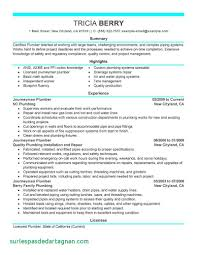 Resume Objective Examples For A Welder Awesome Analysis Best Buy Pany Free Essays Steamfitter Pipefitter