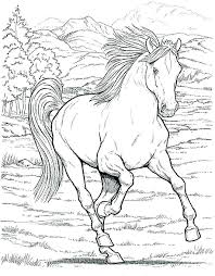 Printable Coloring Pages Horses Horse Jumping Page Of