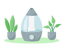 luftbefeuchter oder luftfeuchtigkeitscreme und pflanzen