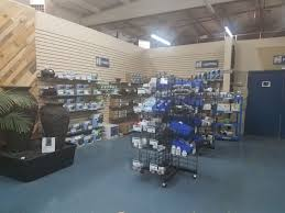 Tile Shop Coon Rapids Hours by Buy Pond Supplies How To Shop At Hedberg Do It Yourself