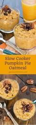 Splenda Pumpkin Pie Crustless by Best 25 Pumpkin Pie Ingredients Ideas On Pinterest Pumpkin Pie