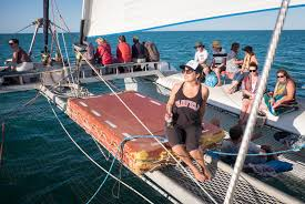 Catamaran Insurance Pharmacy Help Desk by My Favorite Experiences In Western Australia Adventurous Kate