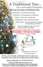 Fraser Fir Christmas Trees For Sale by Maurice Mandry Christmas Trees