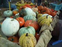Pumpkin Patch Northwest Arkansas 2015 by Dickey Farms Home Facebook