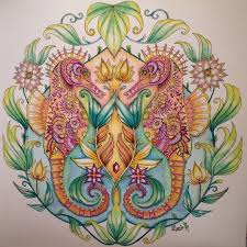 17 Best Coloring Johanna Basford Seahorse Images On Pinterest