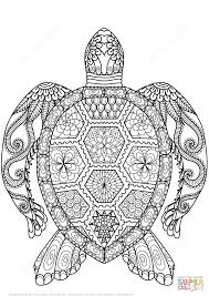 Turtle Zentangle Coloring Page