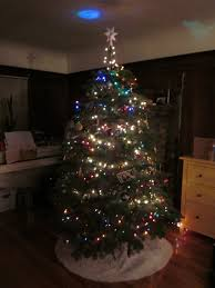 Delancey Street Christmas Trees Hours by Kim U0027s Kitchen Sink On Productivity