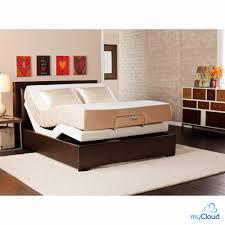Adjustable Split Queen Bed by Queen Bed Queen Size Adjustable Bed Kmyehai Com
