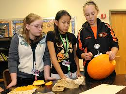 Where Did Carving Pumpkins Originated by Anatomy Of A Pumpkin Junior High Students Learn Across The