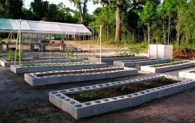 building raised garden beds with cinder blocks