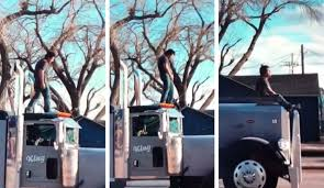 100 Truck Jumping Man Arrested After Jumping On Top Of Cattle Truck In Bizarre Traffic