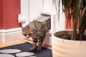 Doggie Door For Patio Door Canada by Amazon Com Sureflap Microchip Cat Door White Pet Doors Pet
